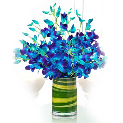 Magical Blue Orchids Vase: Orchid Flowers