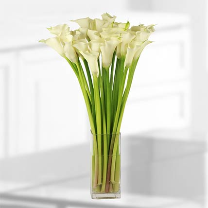 Stems White Calla Lilies Vase: Same Day Delivery Gifts