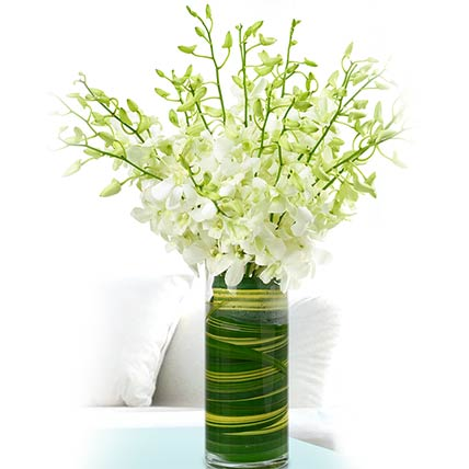 Stems White Dendrobium Orchids Vase: Thank You Flowers