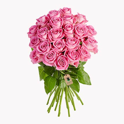 Bunch Of Pink Roses: Gifts Offers and Deals