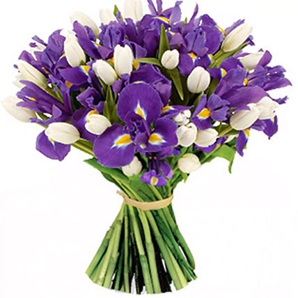 Blue Iris & White Tulips Bunch: Gifts To Say Thank You
