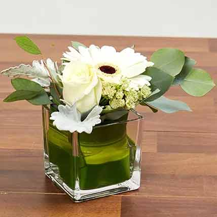 Vase Of White Flowers: Apology Flowers