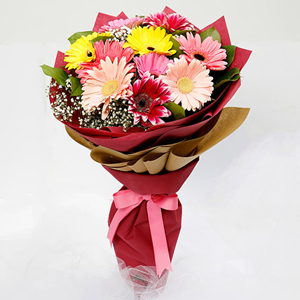 10 Gerbera Flowers Bouquet: Anniversary Flowers