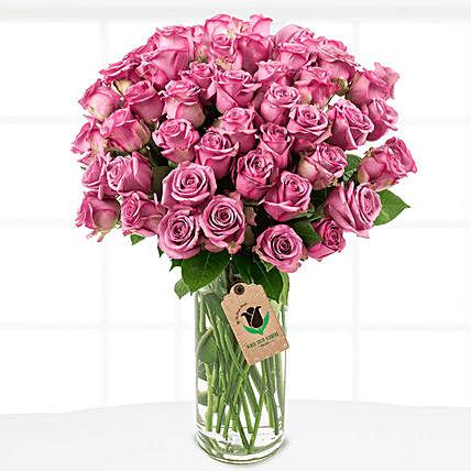 50 Royal Purple Roses Vase