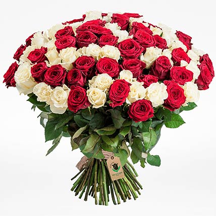 Red & White Roses Bunch- Deluxe